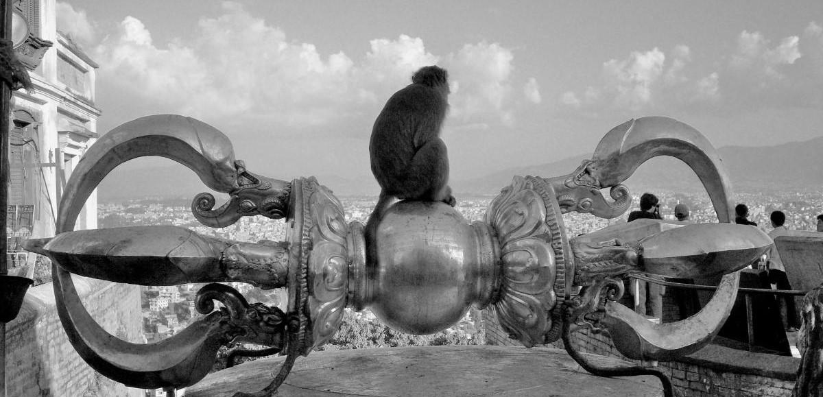 Буддийские туры в Непале, Тибете и Бутане